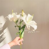 Al fin sabado!! 🤟🏻🎊  ▫️ Los invitamos a conocer el anticipo de nuestra colección primavera-verano en nuestro sitio www.coleccionabril.com.ar o en nuestro local ubicado en Campana 446 hoy hasta las 13:00hs, CABA ▫️  Los esperamos!! 🌸🌸  #SS22 #verano22 #revender #enviosatodoelpais #mayorista #mayoristaflores  #shoponline #avellanedaflores #avellanedaropa #indumentaria #ropamujer #tendencia #moda #nuevatemporada #mayoristasavellaneda #indumentariafemenina #mayoristas #mayoristasargentina #ropapormayor #ropamujer #flores